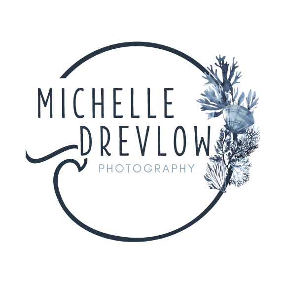 MichelleLogo-WhiteBackground