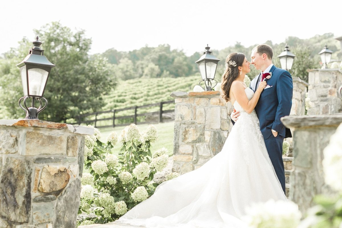 Northern Virginia Wedding_1320