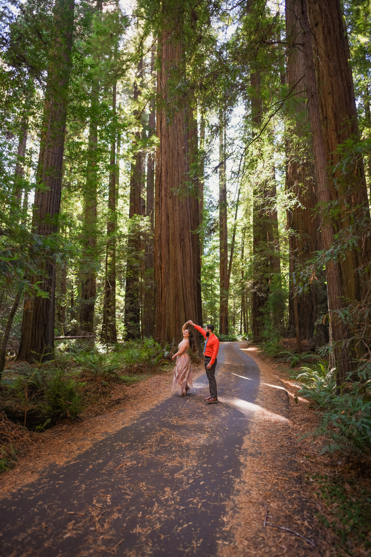 Redway-California-engagement-photographer-Parky's-Pics-Photography-Redwoods-Avenue-of-the-Giants-engagement-10.jpg