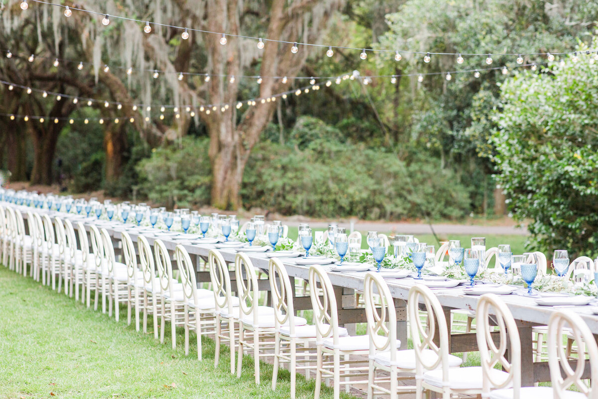 Outdoor_Charleston_Legare_Waring_House_Blue_Wedding-87