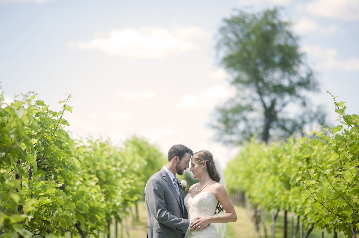 MEAGAN_CHRIS_ROSEBANK_WINERY_WEDDING_IMAGERY_BY_MARIANNE_2014-343