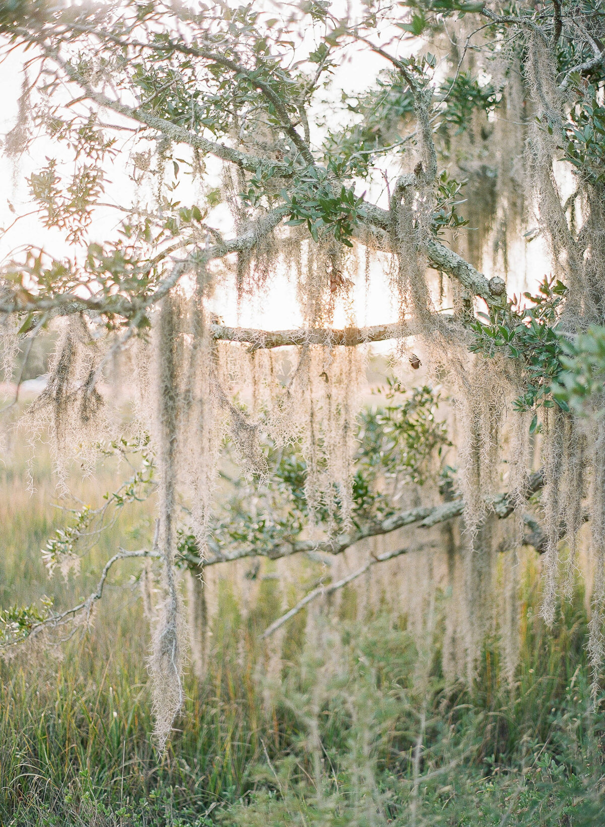 kiawah-river-wedding-clay-austin-photography-82