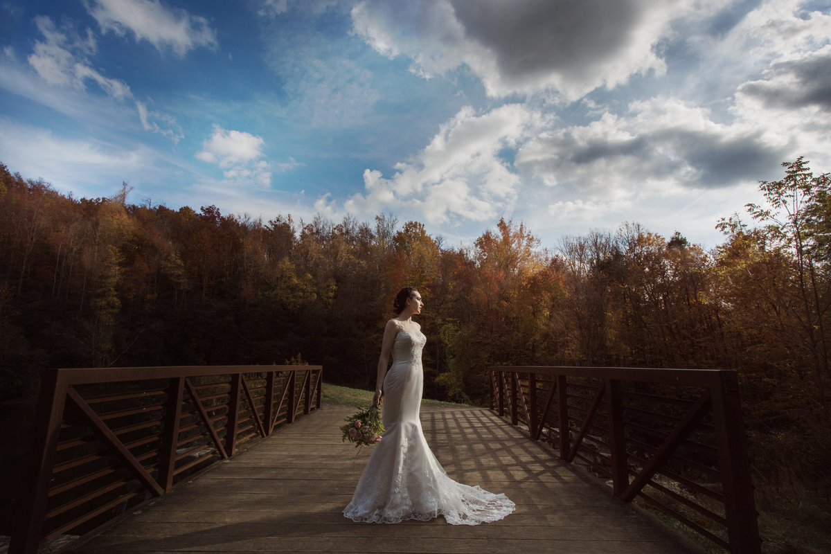 Bride stands in dramatic light during bridal portraits at a Charlotte wedding.