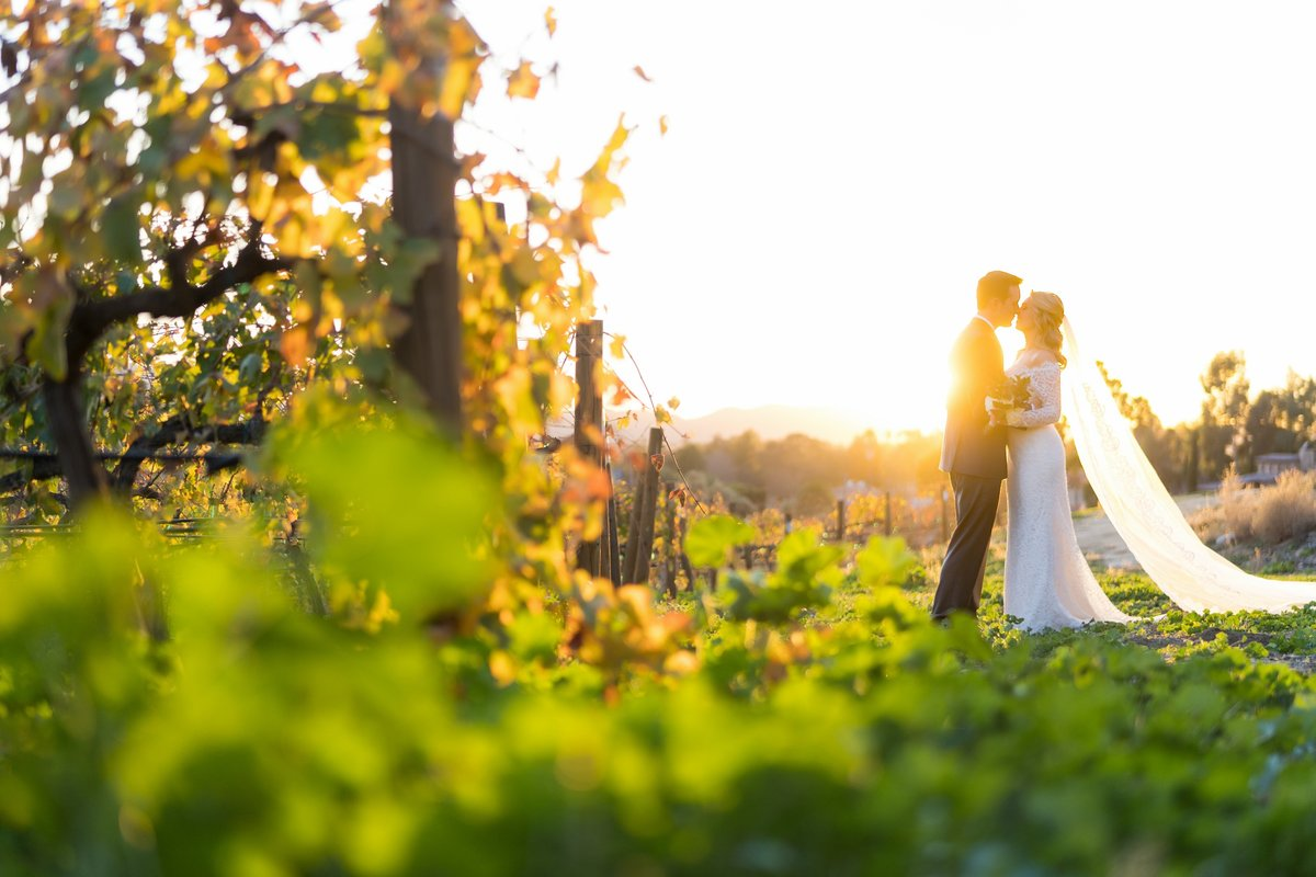 Callaway Winery Wedding Photos-23