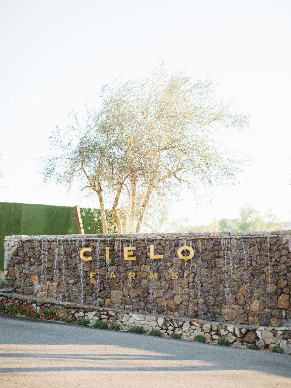 cielo-farms-wedding-108