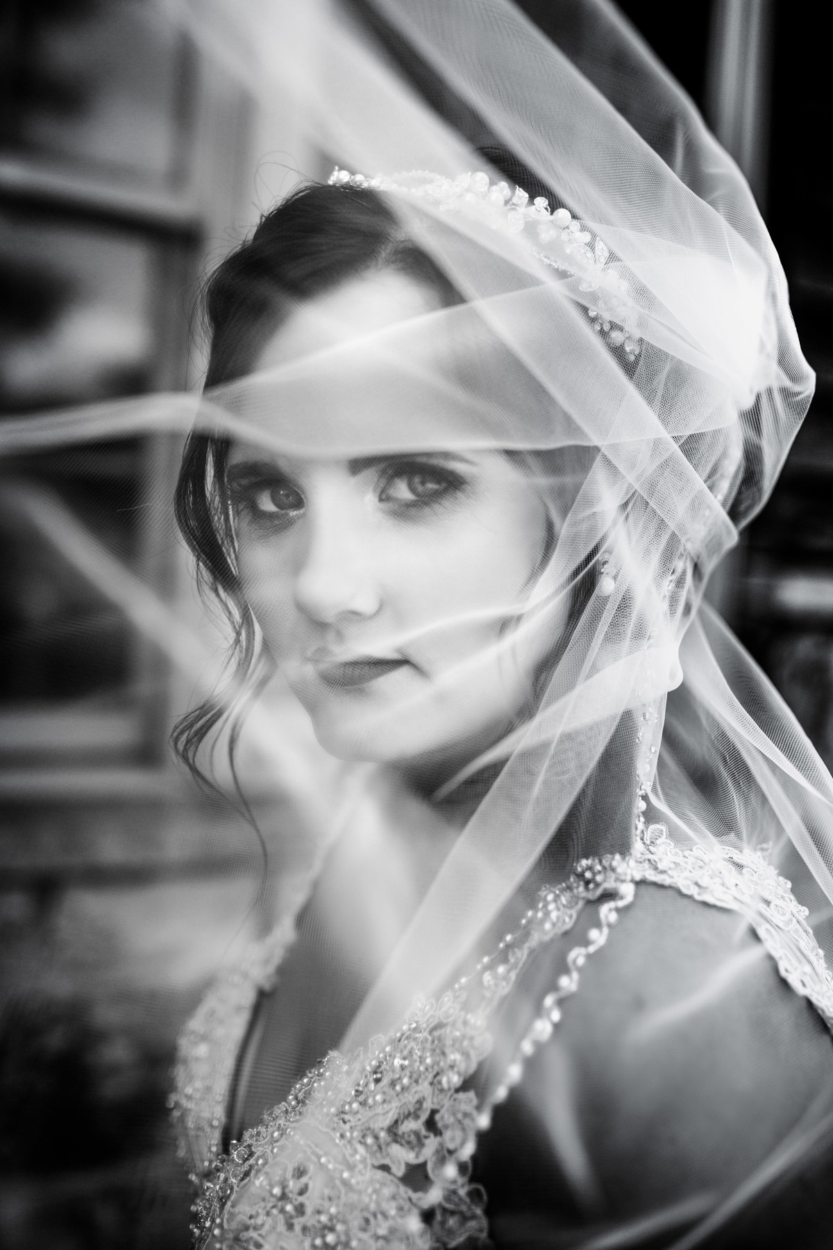 Quad cities bride looking through veil