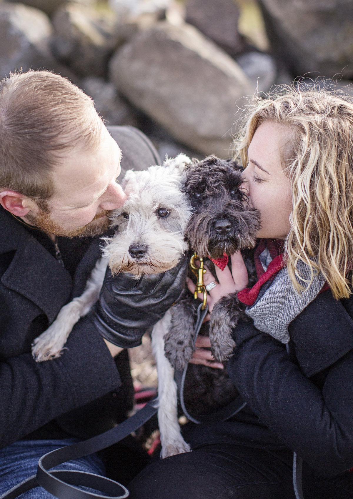 family photos with dogs couples photo with dogs