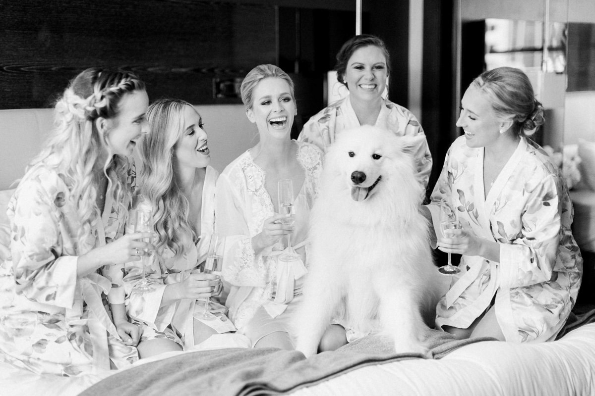 gorls in robes laughing sitting on bed with white dog