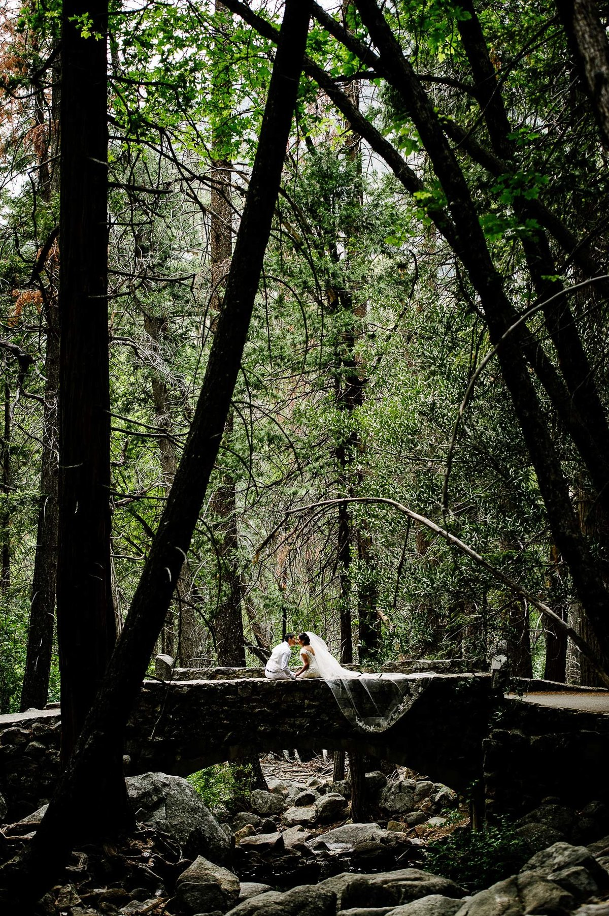 bride and groom sitting for their wedding  aT YOSEMITE NATIONAL PARK