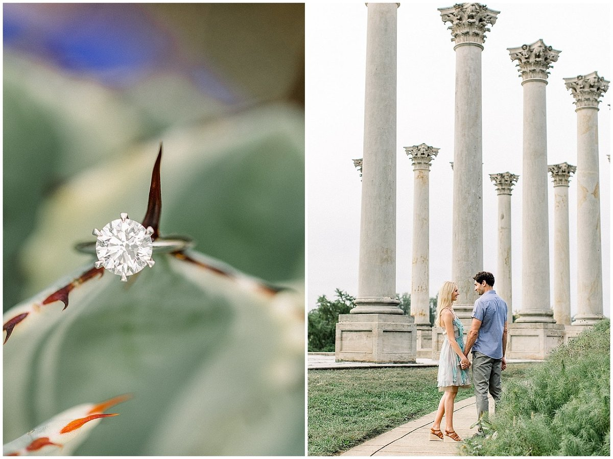National Arboretum Engagement
