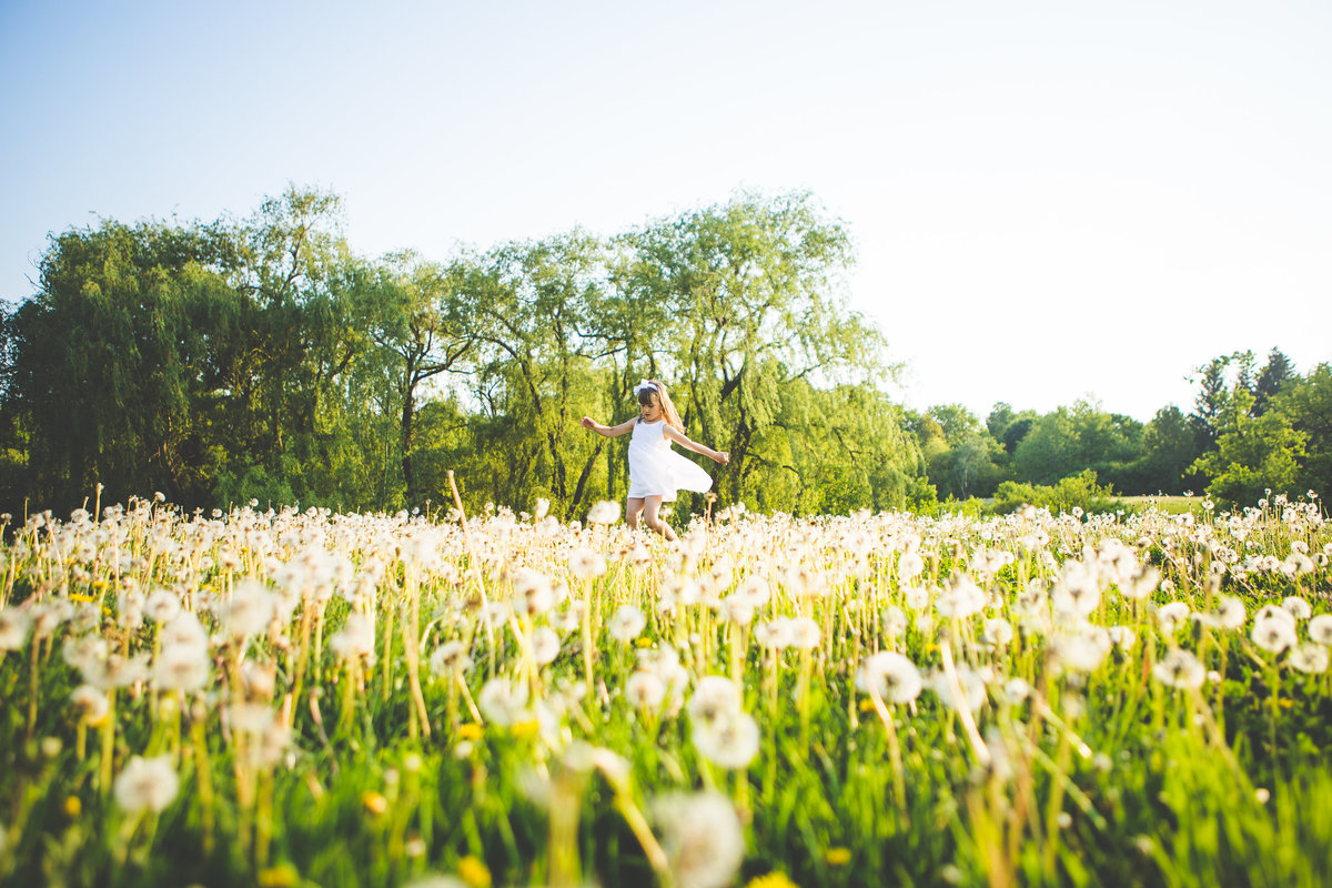 5 year old girl dancing in dandelion field {Burlington Child Photographer}