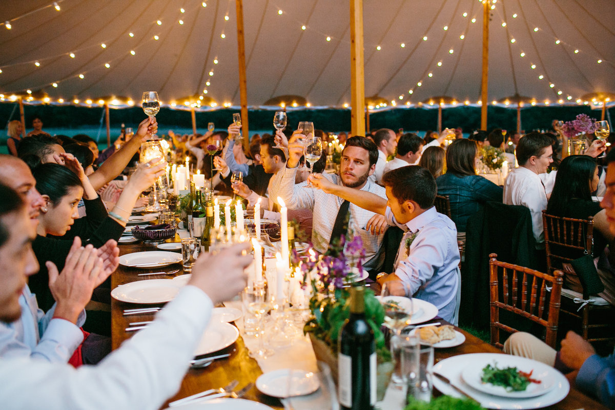 Guests toast at reception
