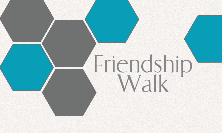 friendship walk cover