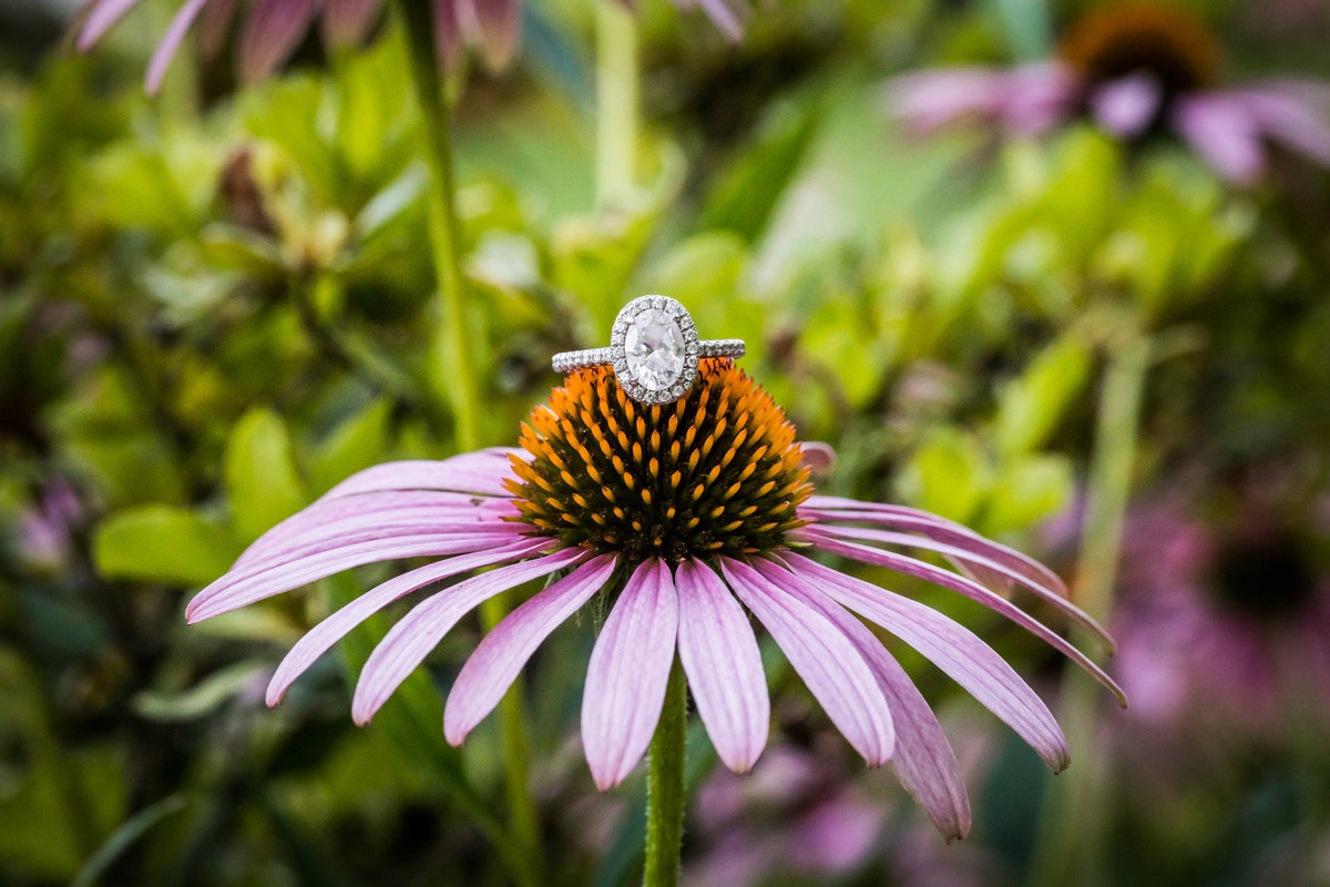 engagement-photo-sayen-gardens-075