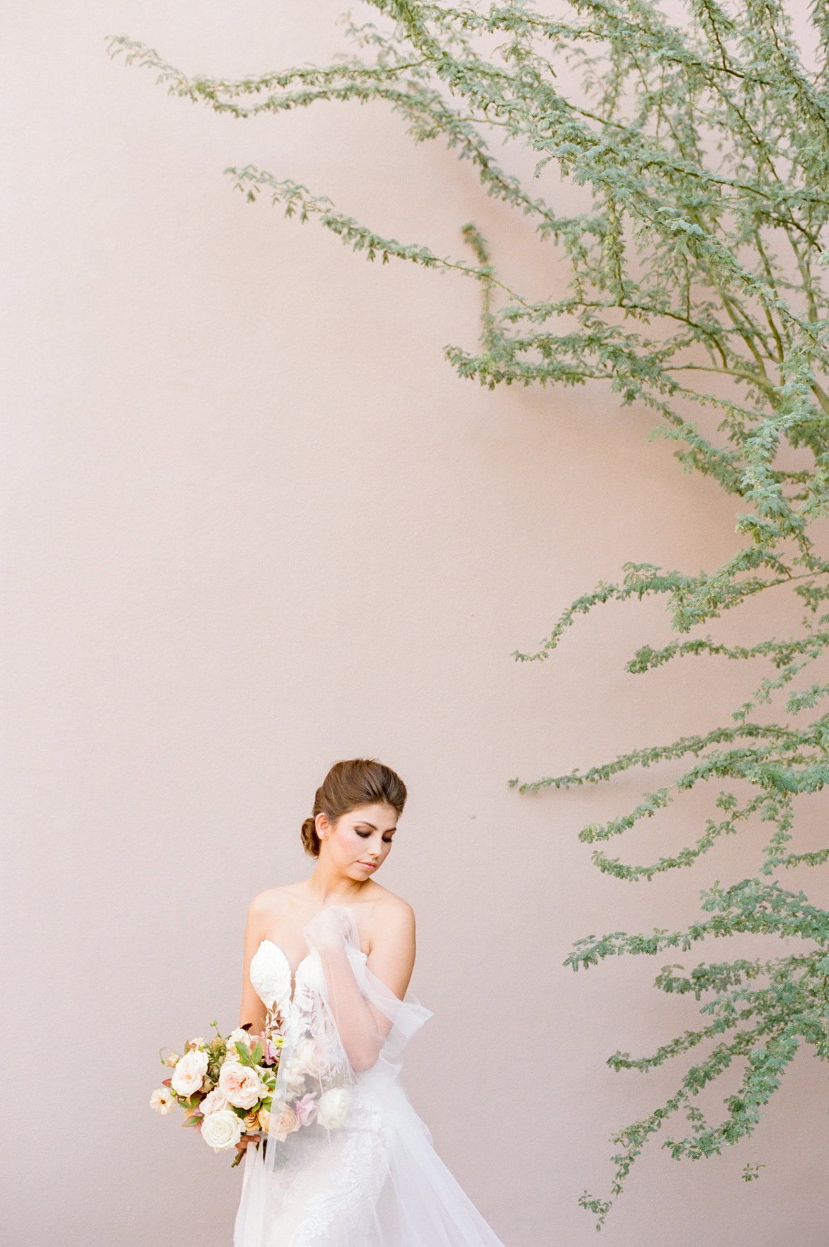 bride in front of pink wall with green cactus branches