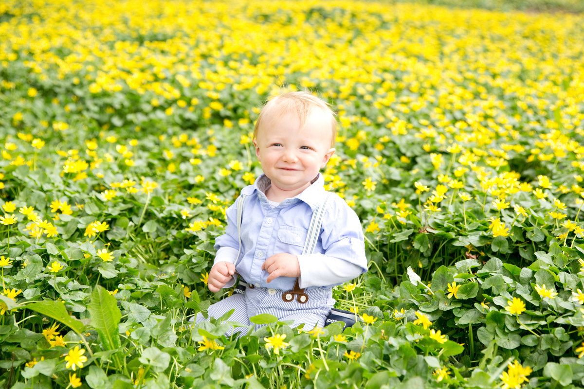 Little boy poses for camera in field of flowers in Riverdale, Bronx.
