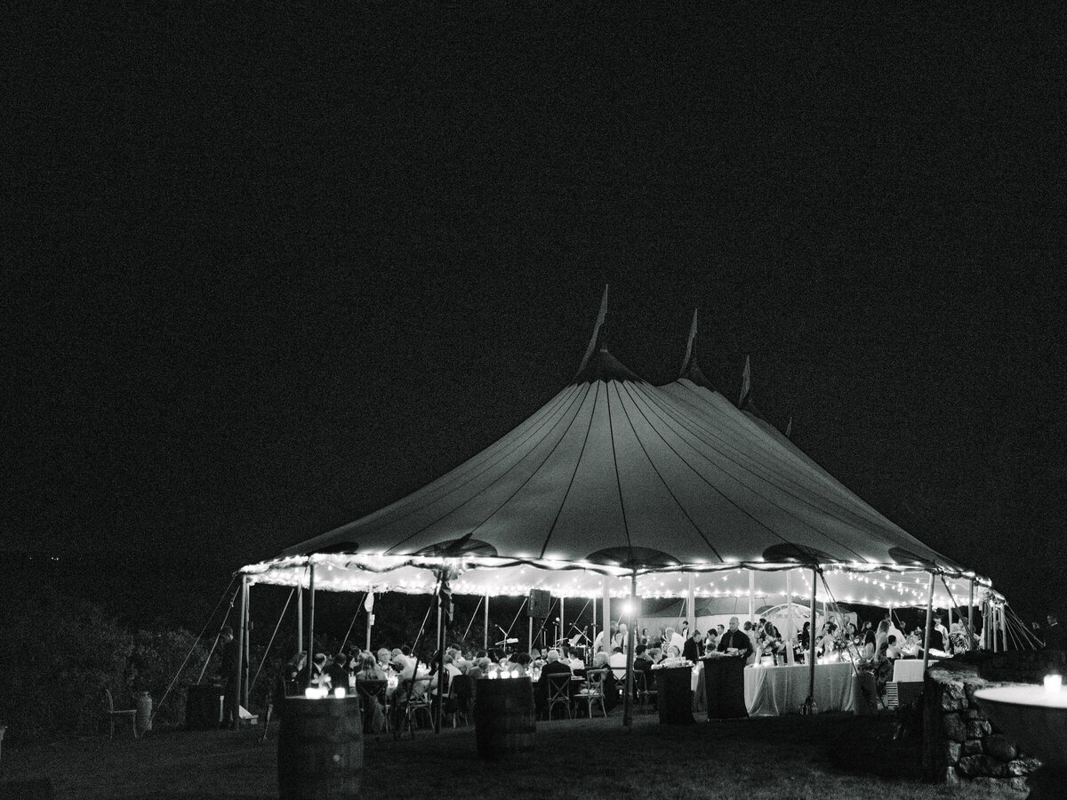 Wings Neck Tented Wedding339