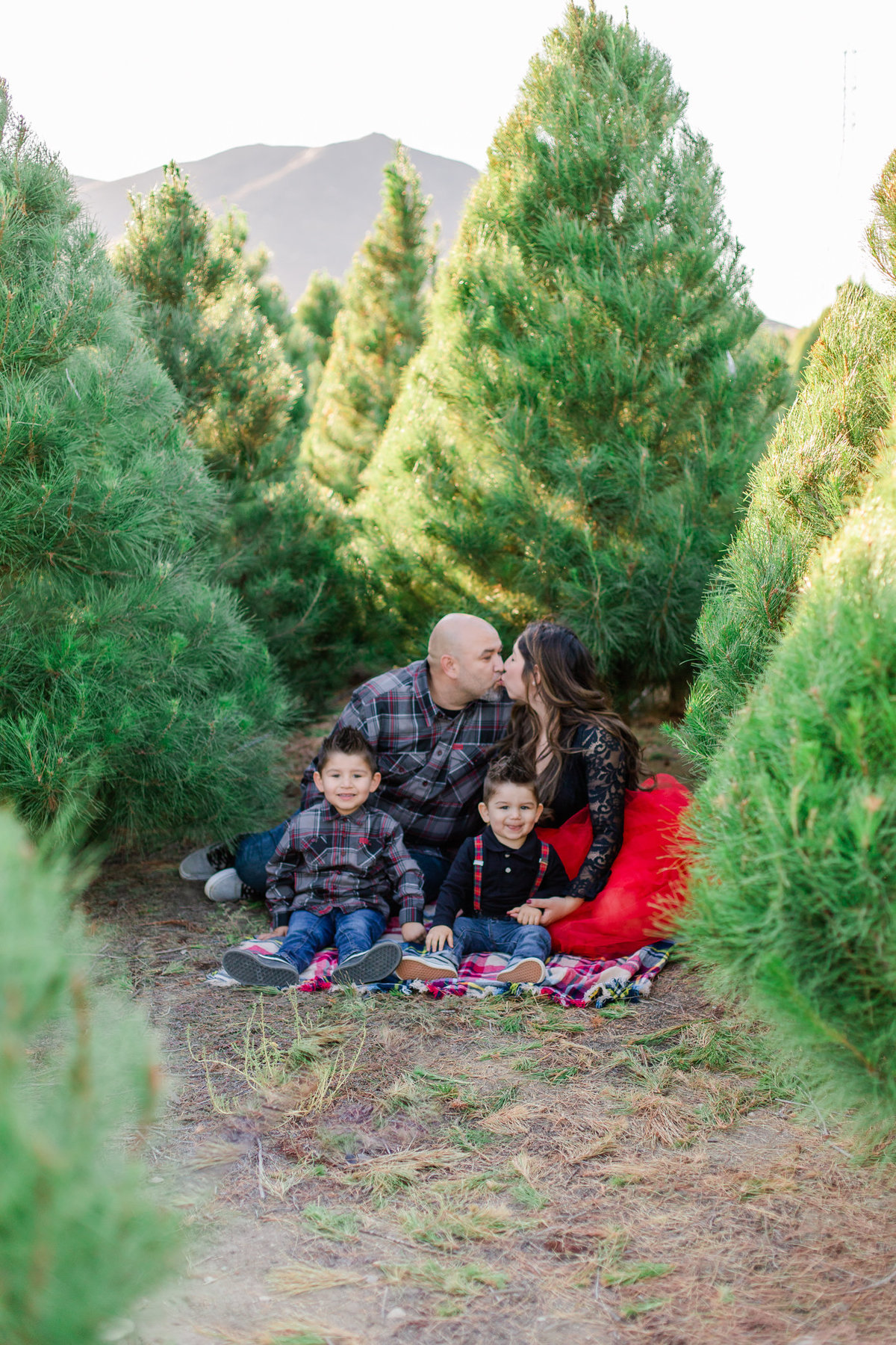 Xmas Photography, Rye Farm Christmas Tree, Family Photography S&V-23