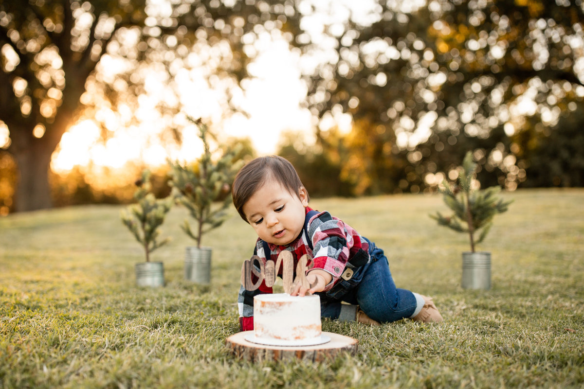 hanford-cake-smash-photographer