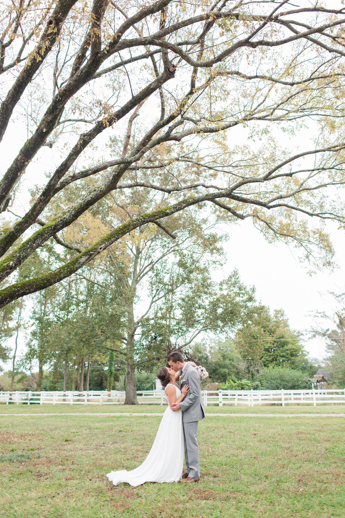 Bride and groom kissing under a big tree at Culpepper Barn