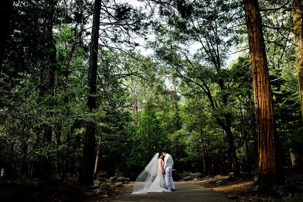 bride and groom kissing T YOSEMITE NATIONAL PARK