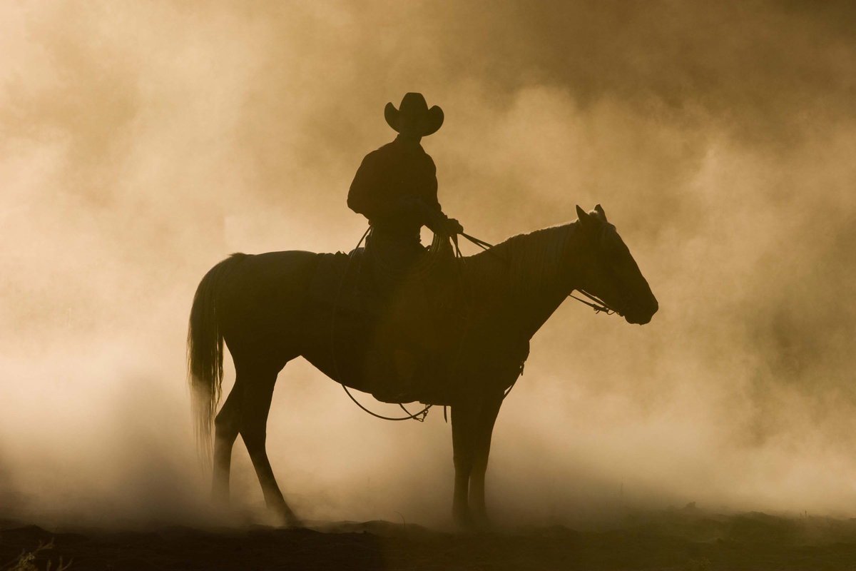 cowboy silhouette photographer Lynette Smith Photography