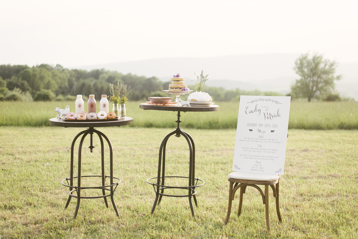 Monica-Relyea-Events-Alicia-King-Photography-Globe-Hill-Ronnybrook-Farm-Hudson-Valley-wedding-shoot-inspiration91