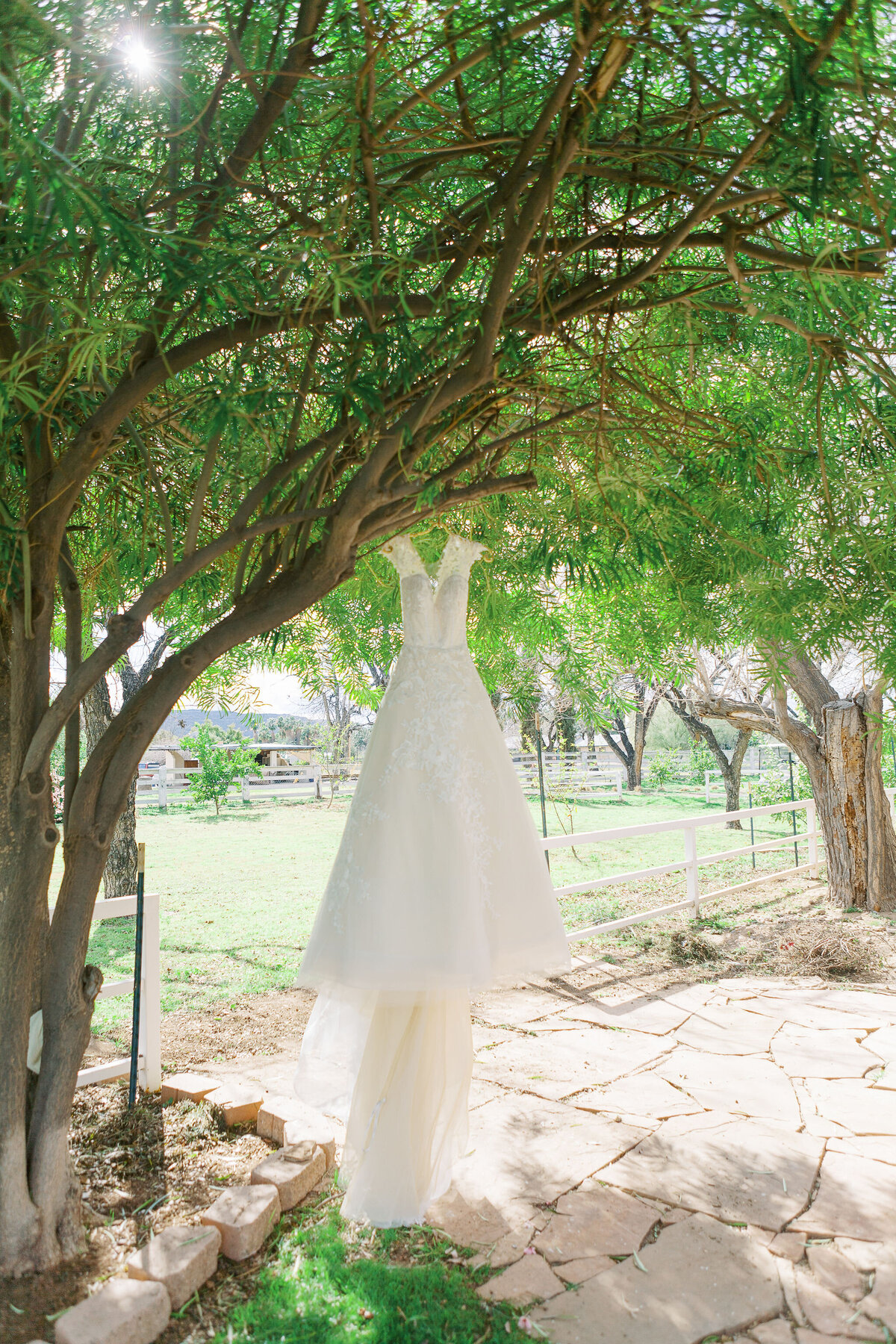 Farm-South-Mountain-Outdoor-Wedding-Mesa-Gilbert-Arizona-0684
