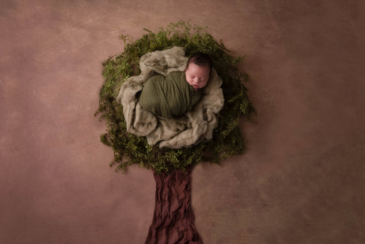 newborn-photographer-columbus-ohio33
