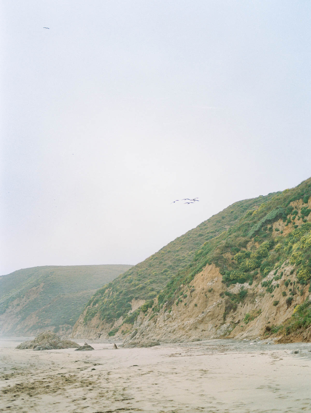 point-reyes-california-photography-11