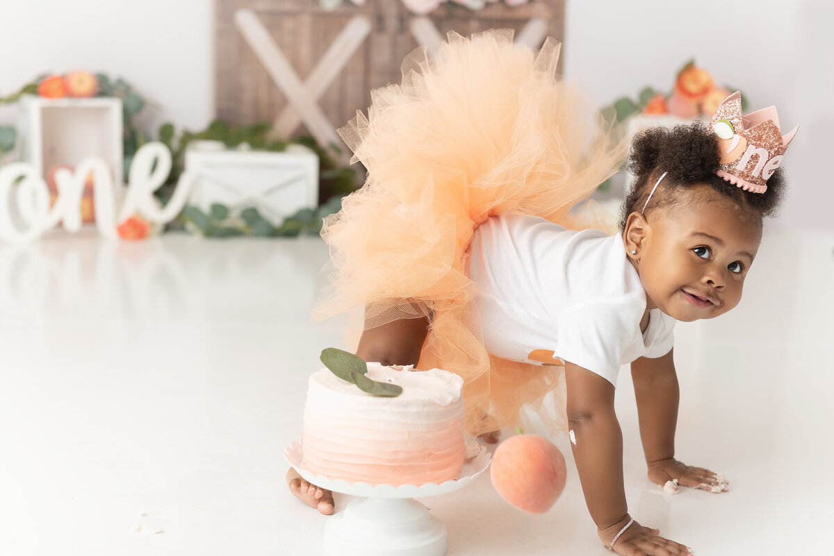 1 Year Smash the Cake Photographer Atlanta Newnan Fayetteville Peachtree City Senoia Ga