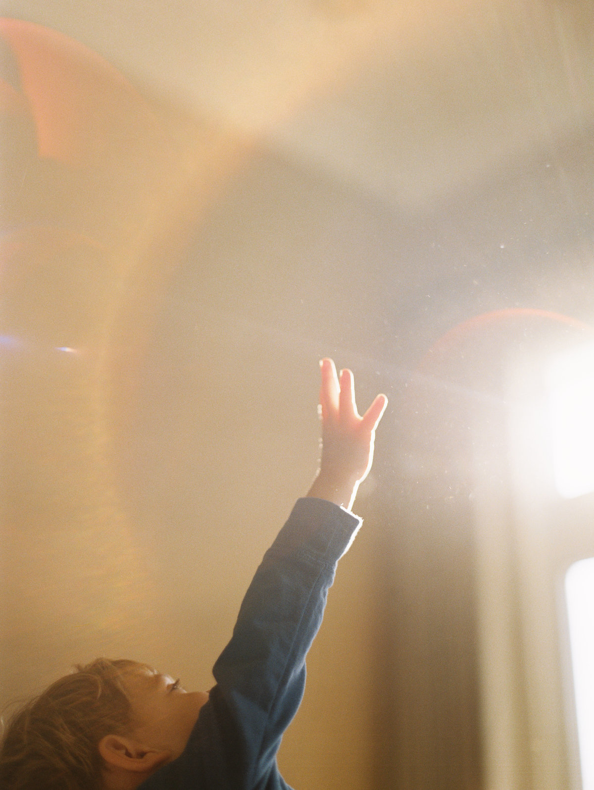little boy reaching up to sunlight