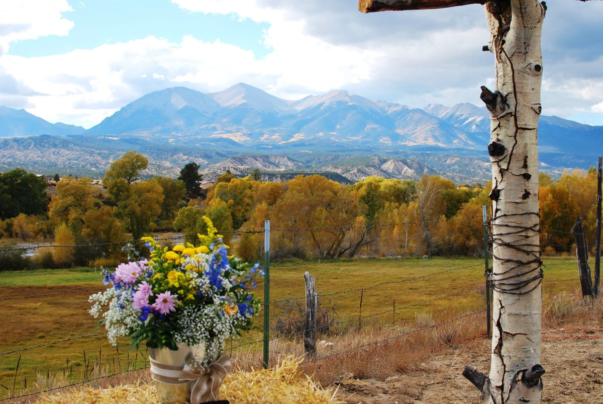 Everett Ranch Rocky Mountain Wedding Outdoor Barn Rustic Salida Colorado Alpaca Collegiate Peaks Vintage Ranch Nature Natural Beauty Altar Ceremony Reception Venue Flowers 054