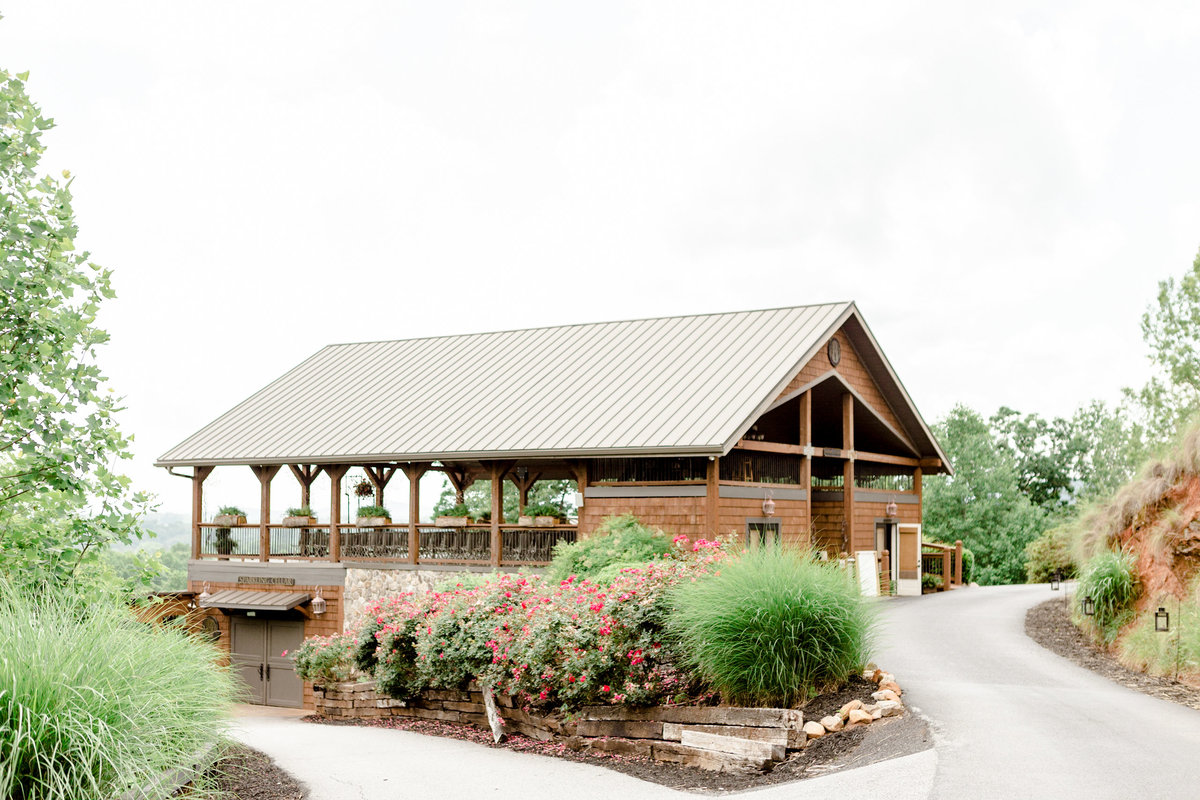 dahlonega-georgia-wedding-mountains-wolf-mountain-winery015
