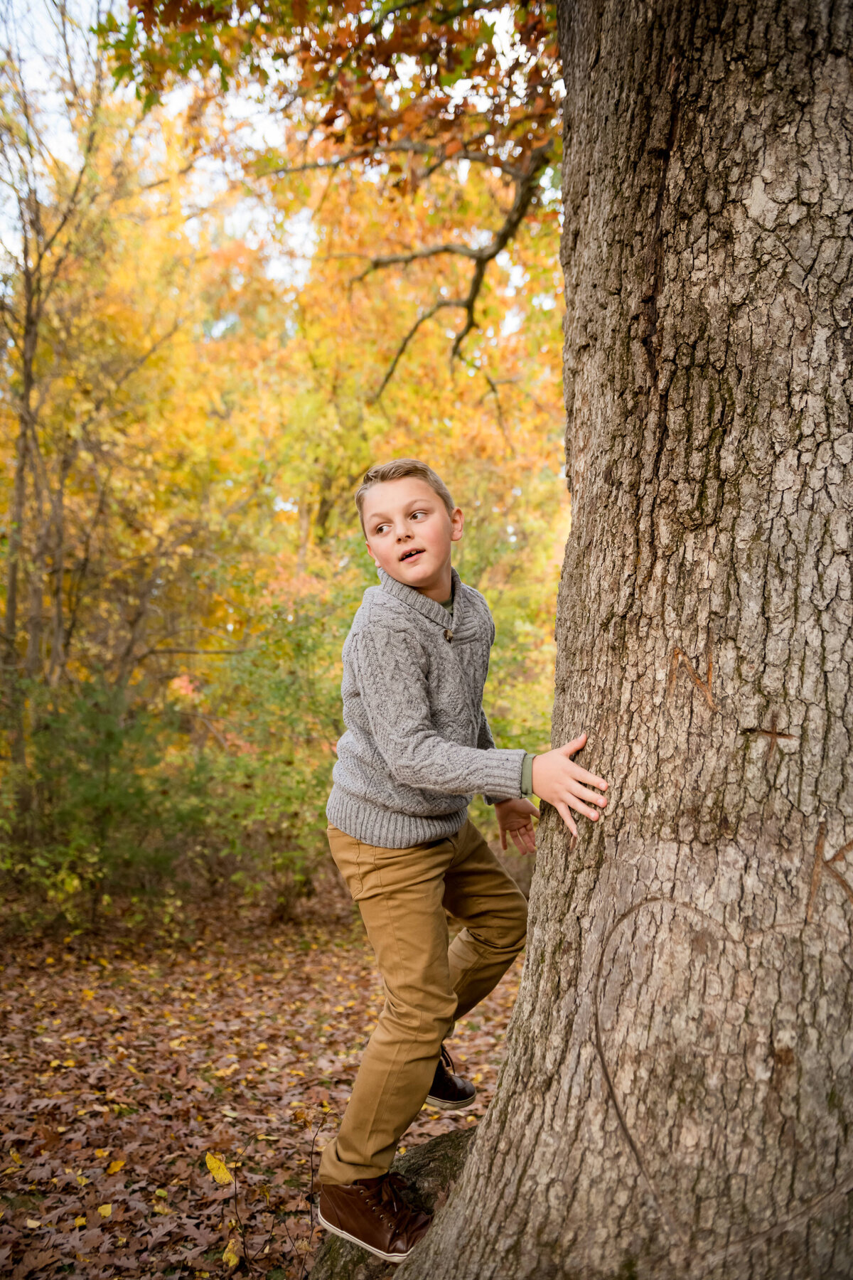 boy climbing tree photo
