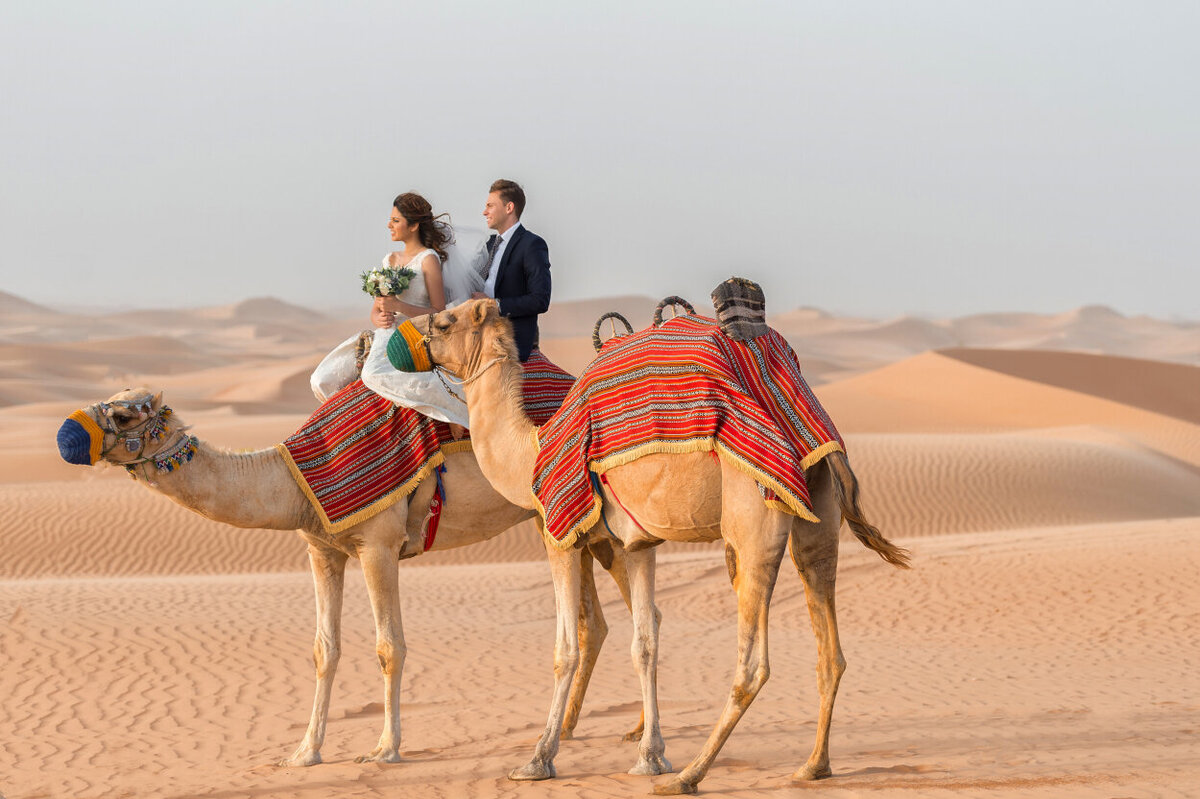 Wedding couple riding a camel during Arabian Night Wedding photoshoot organized by Lovely & Planned