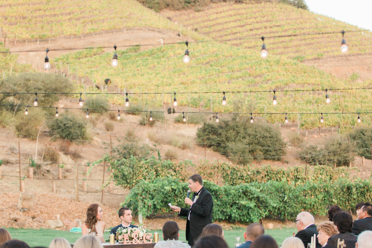 Triunfo Creek Vineyard Wedding-7247