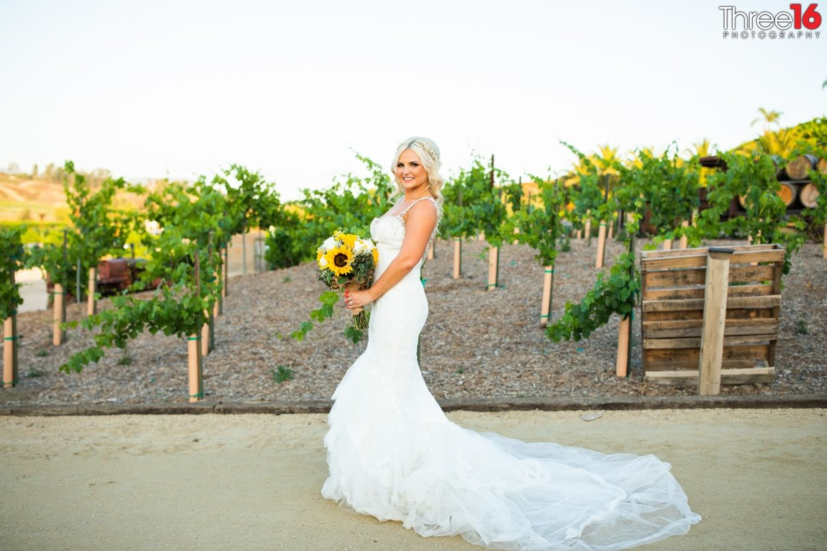 Bride posing with dressed fanned out in front of winery