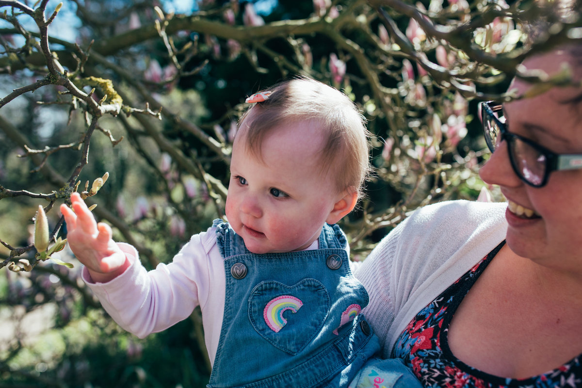 Natural photograph of mum and toddler girl playing in the blossom in Ipswich