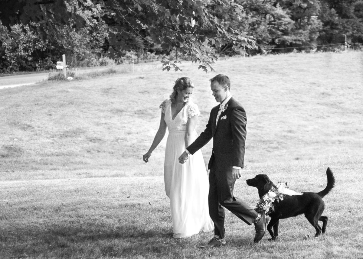Bride & groom smile & walk hand in hand through a field with their dog at their wedding in Gorham, Maine
