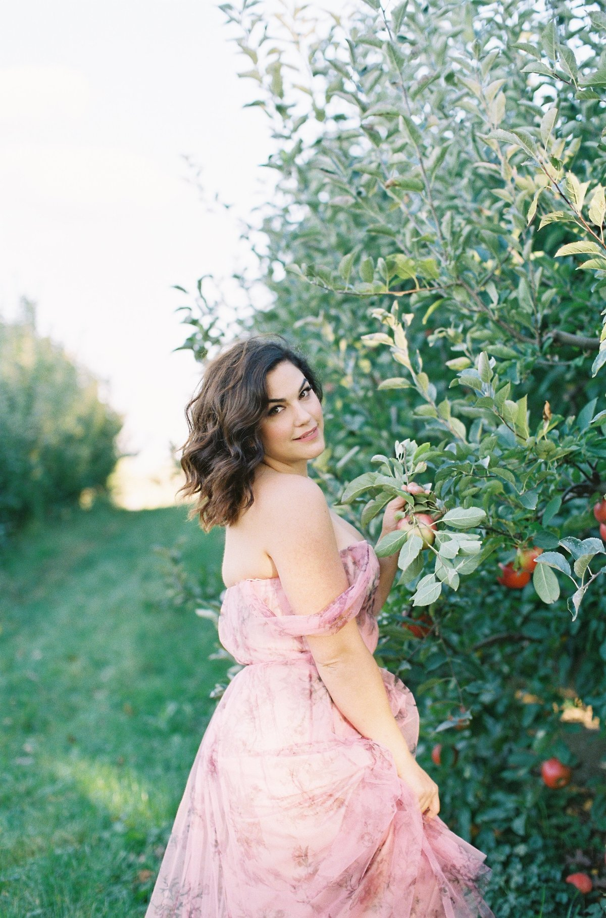 A dark haired woman in a gauzy pink dress posing in an apple orchard Marchesa Notte Soergel's Orchard  | Pittsburgh Wedding Photographer | Anna Laero