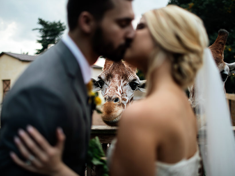 Wedding-Philly-NY-Ithaca-Catskills-Jessica-Manns-Photography_273