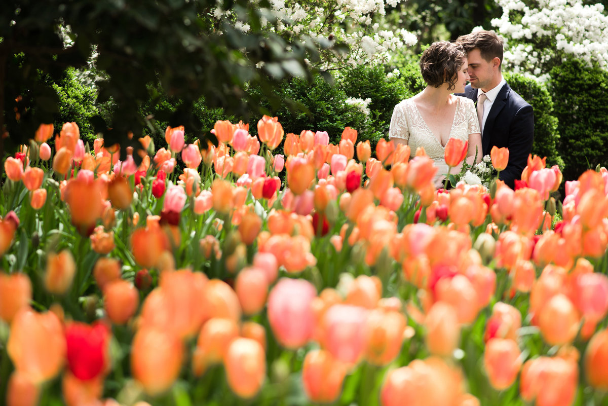 dixon gallery and gardens wedding photo