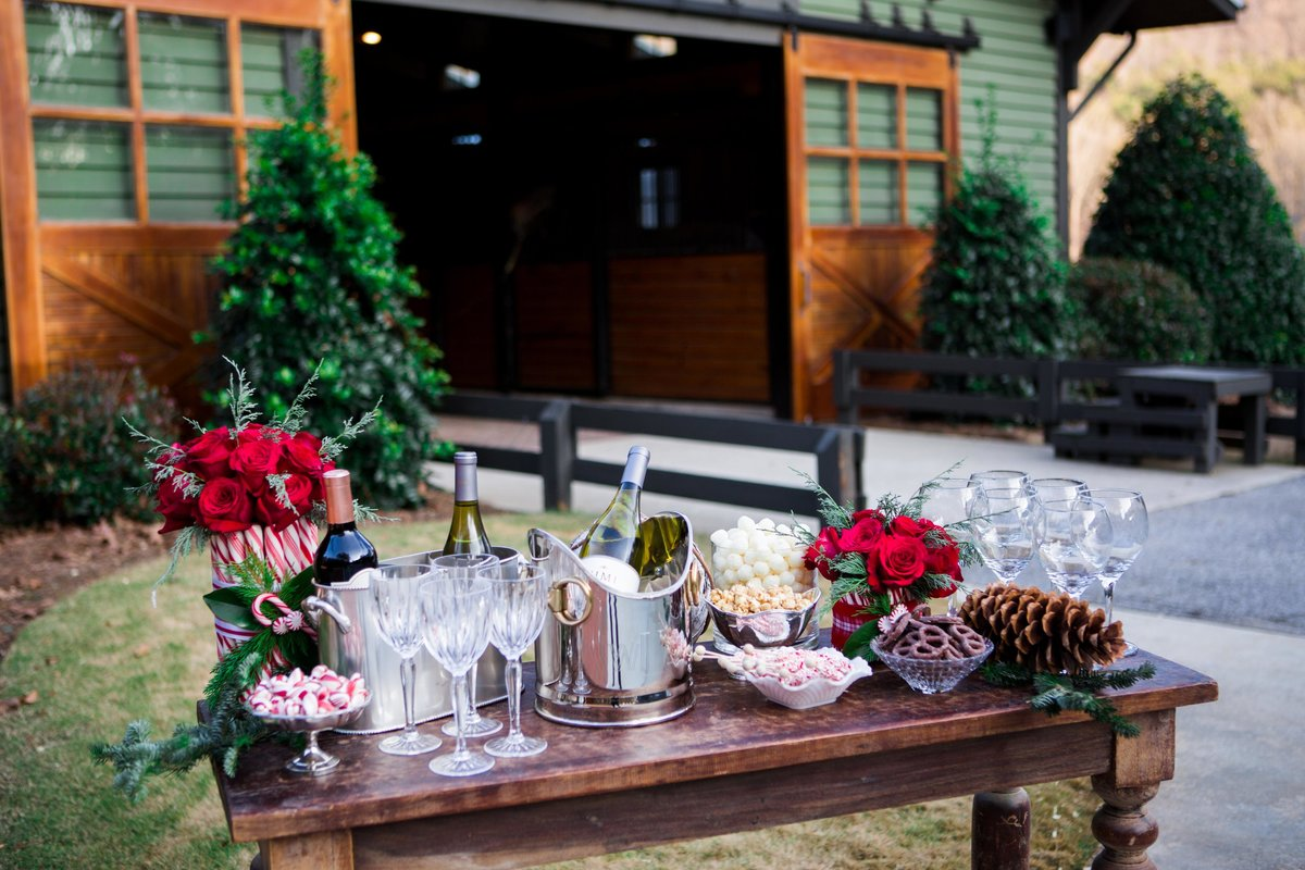 Windwood_Equestrian_Outdoor_Farm_Wedding_VenueArden_Photography_Christmas_Party130