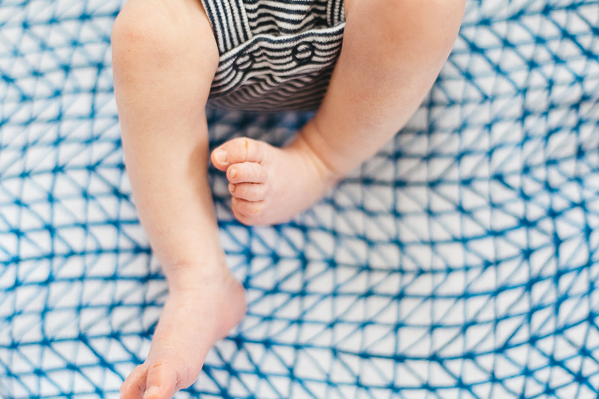 Photograph of a newborn's toes on a blue and white blanket