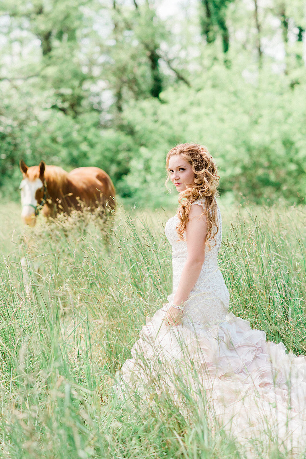 bride and horse in a field