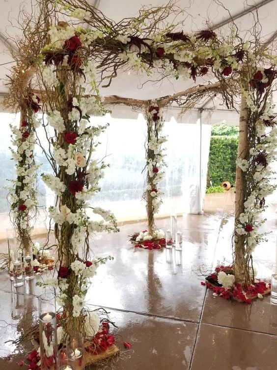 Birch Curly Willow Chuppah
