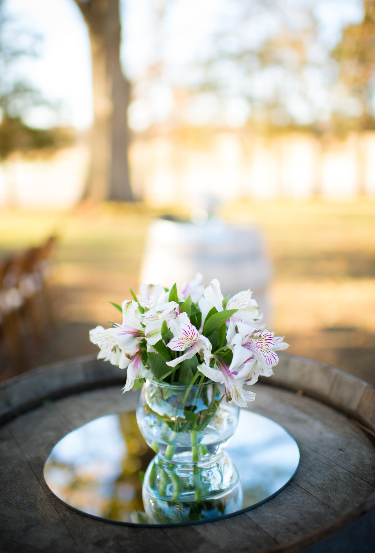 Tennessee Wedding Photographer - Mint Magnolia Photography3410