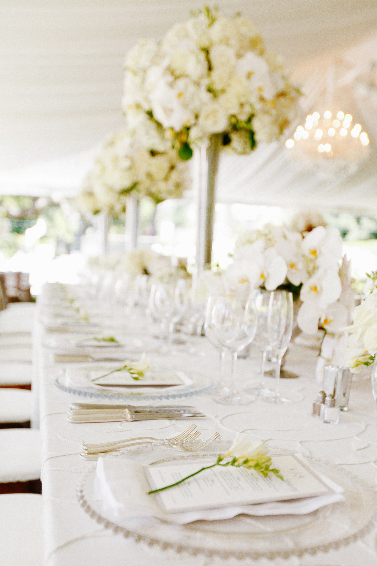 An all white wedding tabletop.