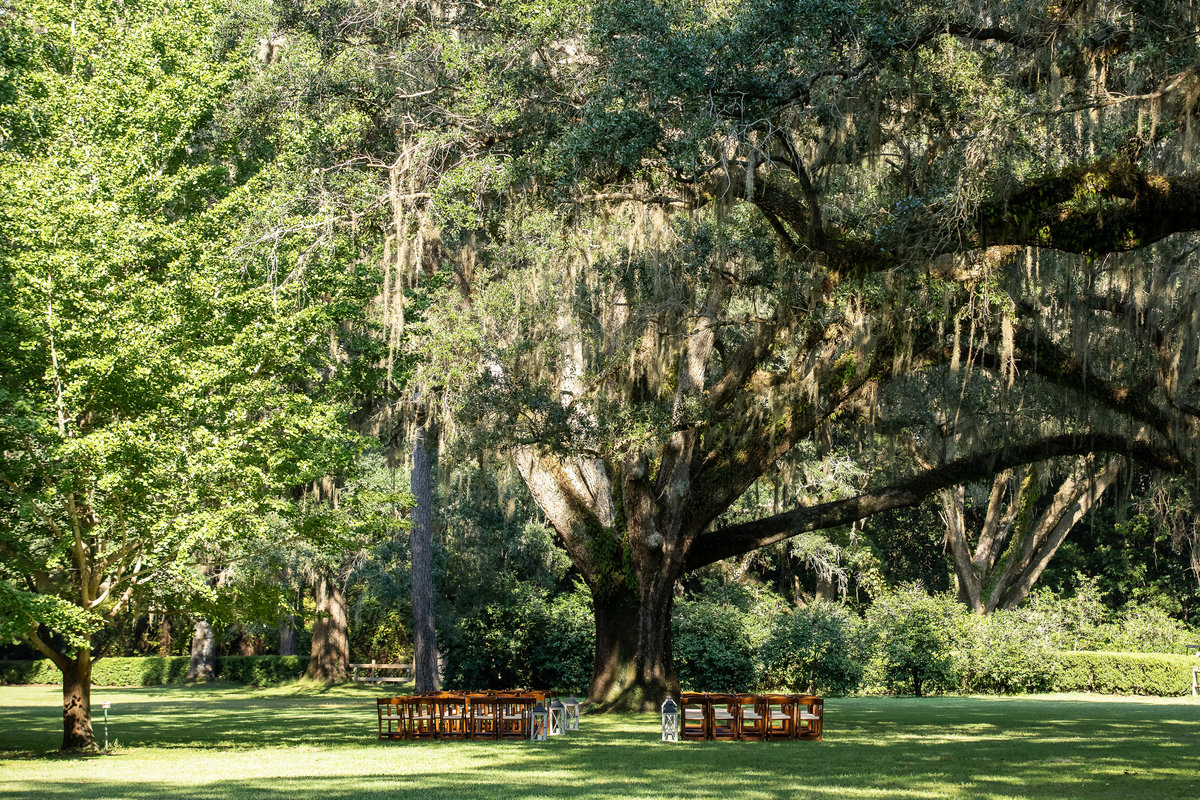 eden gardens wedding photographer, gwyne gray photography